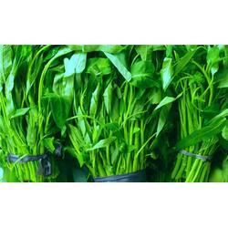 健康蔬菜配送、蔬菜配送、宏鸿农产品集团(查看)图片