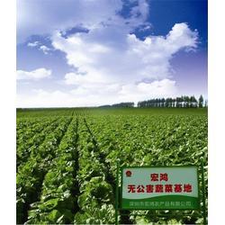 福田家庭农产品配送-农产品配送-宏鸿品质保证图片