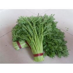 食材配送软件-食材配送-宏鸿农产品集团图片