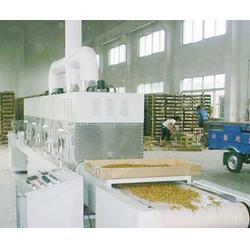 硫酸亚铁微波干燥设备,微波干燥设备,立威微波设备生产线图片