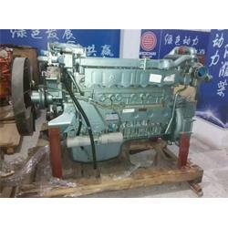 河南发动机企业(海益商贸)(在线咨询)商丘发动机图片