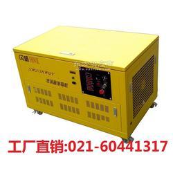 25kw汽油发电机 全自动汽油发电机图片