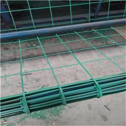 安平县绿色植物攀爬网 土工格栅图片