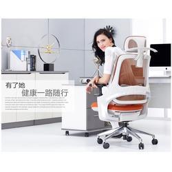 电脑椅|就选GAVEE家维依(在线咨询)|不锈钢电脑椅图片