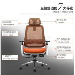家维依网椅(多图)人体工学椅什么牌子好-人体工学椅图片