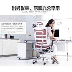 广东办公椅、家维依品牌办公椅、家维依品牌办公椅图片