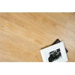 强化地板品牌 三水强化地板 道和建材(查看)图片