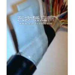 电缆铁路信号电缆 PTYA PTYA23图片
