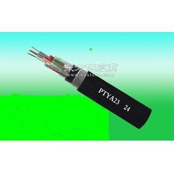 供应耐火阻燃计算机电缆NH-DJYVPMH-DJYPV电话0316-5961051图片