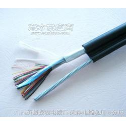 HYA23 30020.4 通讯电缆 每米图片