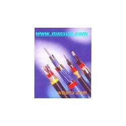 DJYVP2 ZR-DJYVP2 计算机电缆 1421.5 1621.0-厂家图片