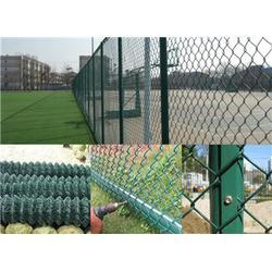 中泽丝网_篮球场围网_篮球场围网生产厂家图片