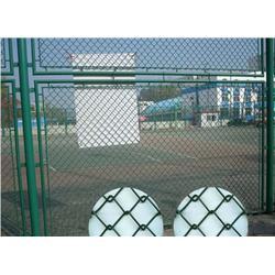体育场围栏网 中泽丝网 体育场围栏网质优价廉图片
