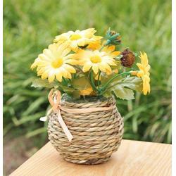 花卉租赁品种,东西湖区花卉租赁,幸福花语园艺(查看)图片