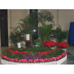 汉口花木租赁、幸福花语园艺、花木租赁图片