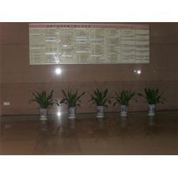 商务中心花卉租赁、花卉租赁、幸福花语园艺(查看)图片