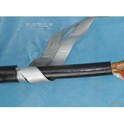 阻燃地埋電纜ZR-HYA22圖片