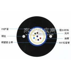 厂家销售GYXTW中心管式光缆图片