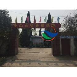 汇宏源农业 土元养殖实用技术-宜昌市土元图片