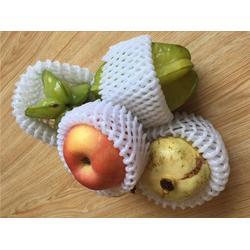 龙口云生厂家 大连网套机 生产水果网套的设备图片