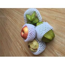 龙口云生网套机质量好(图),水果网套机哪家质量好,扬州网套机图片