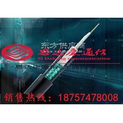 GYTS96芯管道光缆图片
