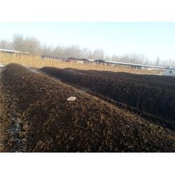 生物有机肥、丰农有机肥(在线咨询)、丰农肥业生物有机肥图片