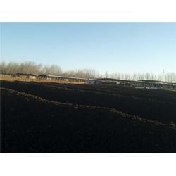 丰农有机肥(图)_生物有机肥厂家_生物有机肥图片