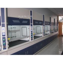 长期销售全钢通风柜,pp物理实验台,PP边实验室操作台,厂家图片