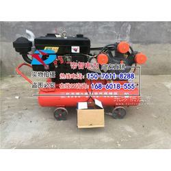 防汛打桩机型号气动植桩机性能参数图片