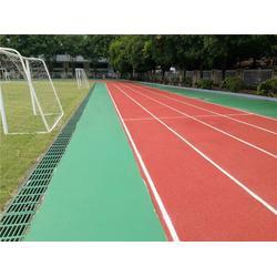 苍南县塑胶跑道|塑胶跑道每平方报价|恒辉体育设施(优质商家)图片
