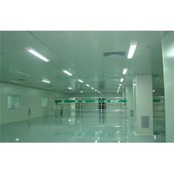净化车间工程-陆杨净化-清阳净化系统工程图片