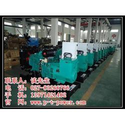 120kw柴油发电机组出租_汉南发电机组_武汉静音发电机租赁图片