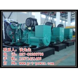 大型发电机组供应-大型发电机组-武汉发电机租赁(查看)图片