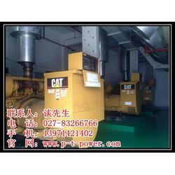 发电机组、武汉静音发电机租赁(在线咨询)、柴油发电机组图片
