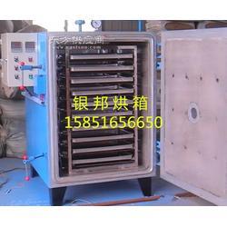 新型电子干燥箱 智能电子干燥箱 电子干燥箱厂家图片