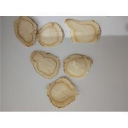 西洋参的作用与功效功能-西洋参的作用-安可森(在线咨询)图片