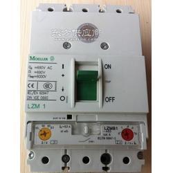 LZMN1-4-A100代理商图片