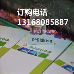 聚合植物酯PT-11玻璃清洗剂原料图片