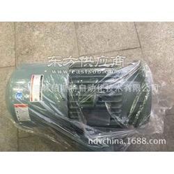 韩国HYOSUNG电机HSX0704291图片