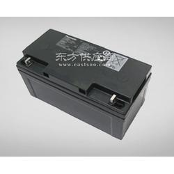 东方阳光供应松下蓄电池 型号齐全图片