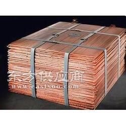 厂家低价供应 金驼1铜图片
