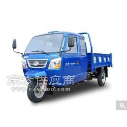 福田领翔1500三轮农用车,驾驶室三轮柴油货车,盘式自卸农用车配件图片