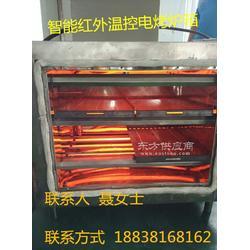 立式烤鱼箱厂家生产与直销图片