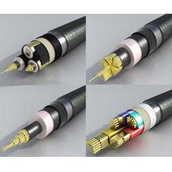 阳谷电缆 绿灯行电缆(图) 阳谷电缆多少钱图片