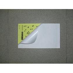 揭阳灭蝇纸-博能环保认真-灭蝇纸多少钱图片