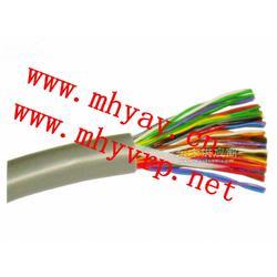 阻燃计算机电缆ZR-DJYVP22MHYA32图片