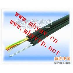 ZR-BVVP2电缆图片