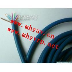 仪表电缆JYPV-2B421图片