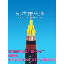 聚氯乙烯电缆KVV51.0MM2图片